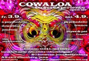 flycowaloa99.jpg